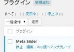 MetaSlider_01